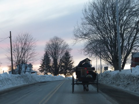 Amish buggy on winter road
