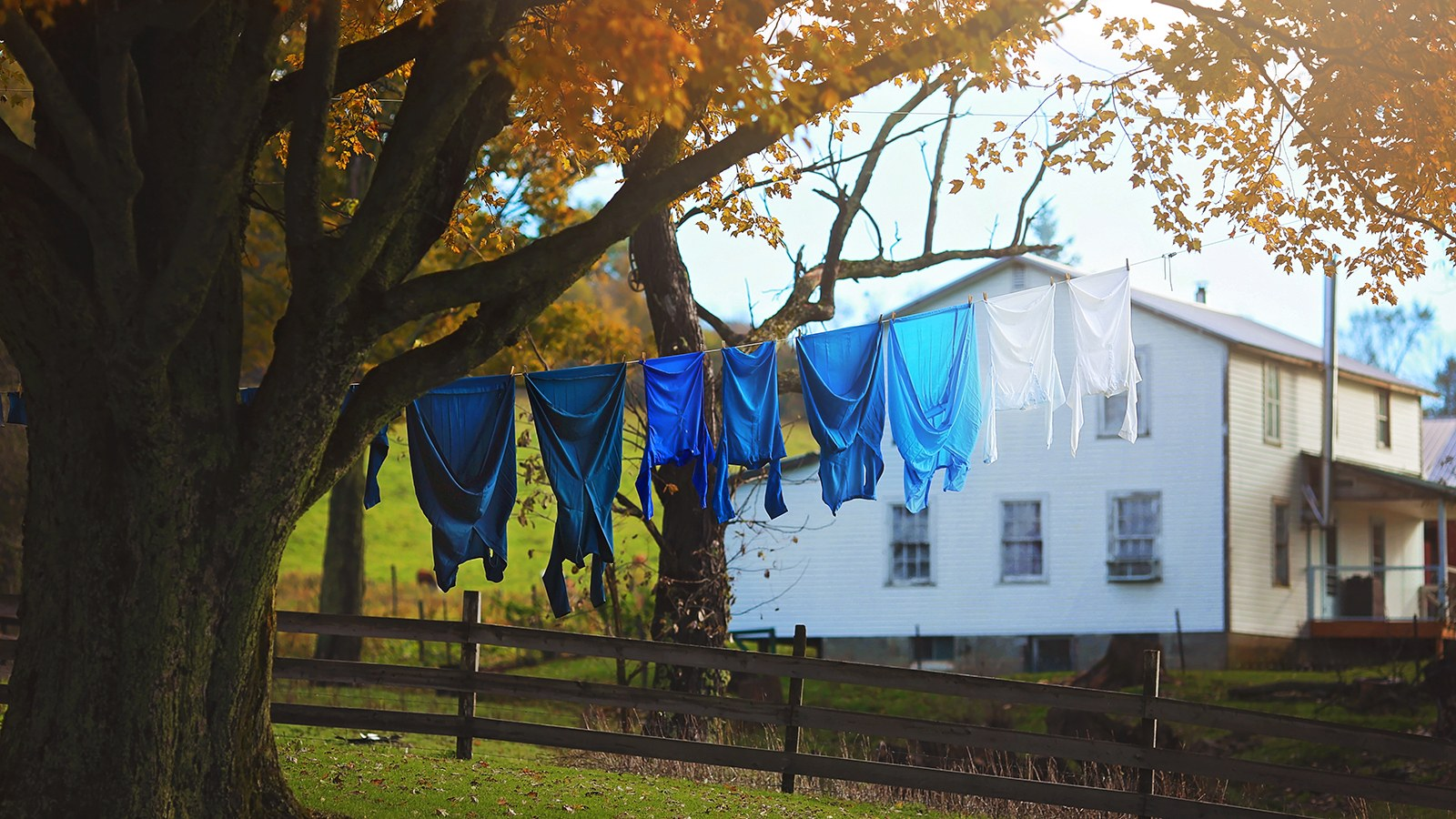 Clothes Drying in the Autumn Breeze