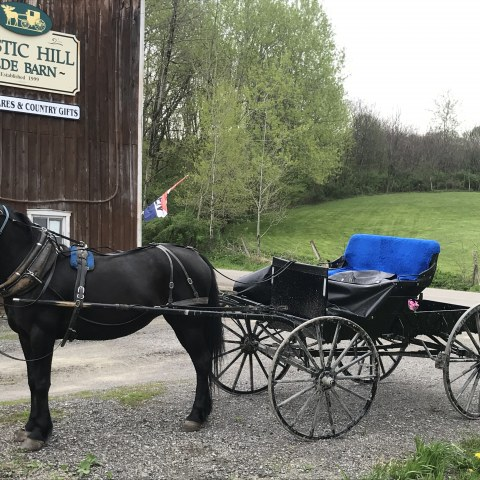 Horse and Buggie parked in front of Mystic Hill Olde Barn